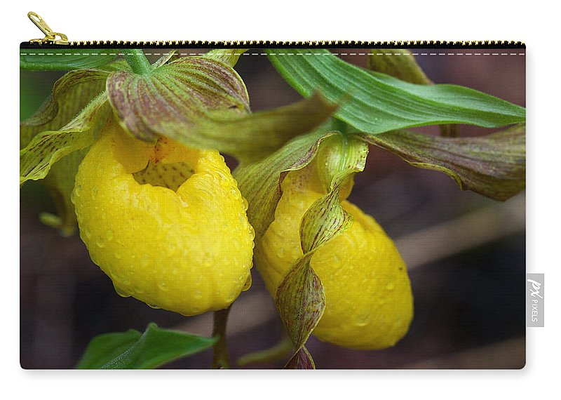 Beautiful Carry-all Pouch featuring the photograph Yellow Lady's Slipper by Jack R Perry