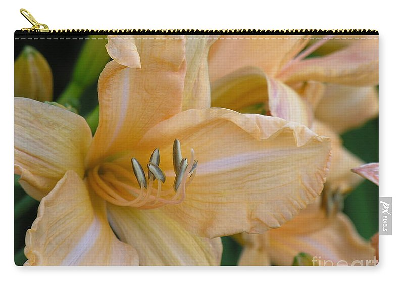 Yellow Carry-all Pouch featuring the photograph Yellow Lilly by Diane Greco-Lesser