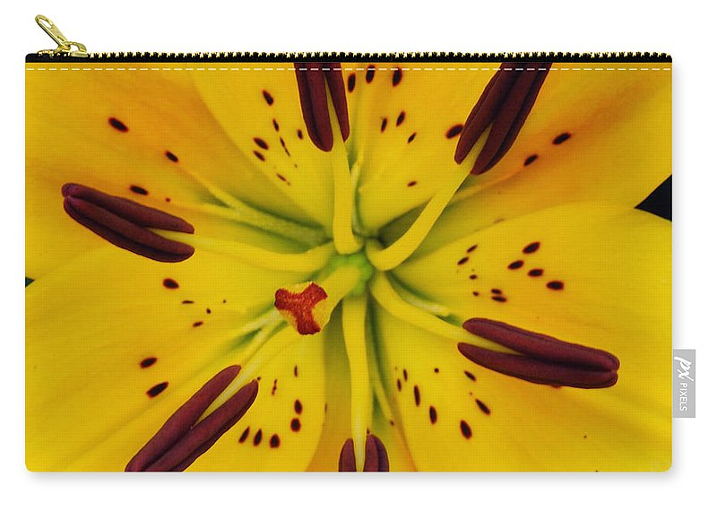 Yellow Carry-all Pouch featuring the photograph Yellow Lily by Michael Peychich