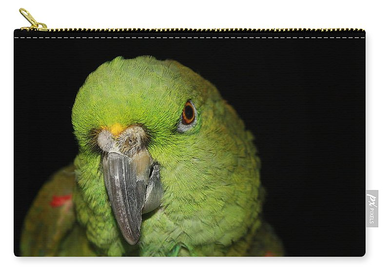 Yellow Carry-all Pouch featuring the photograph Yellow-naped Amazon Parrot by Alexander Butler