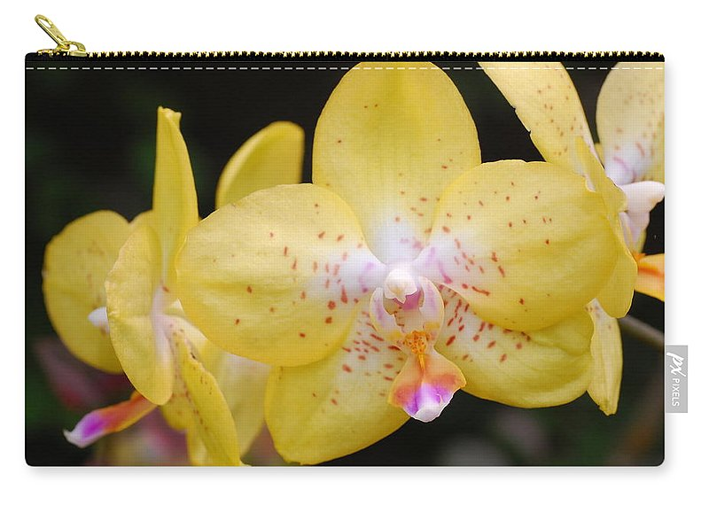 Flower Carry-all Pouch featuring the photograph Yellow Orchid 2 by Amy Fose