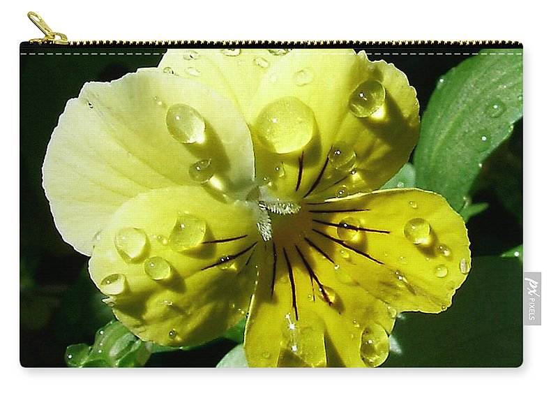Flower Carry-all Pouch featuring the photograph Yellow Pansy by Anthony Jones