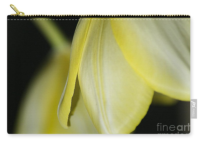 Tulip Carry-all Pouch featuring the photograph Yellow Petals by Deborah Benoit