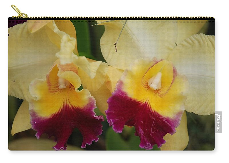 Macro Carry-all Pouch featuring the photograph Yellow Purple Orchids by Rob Hans