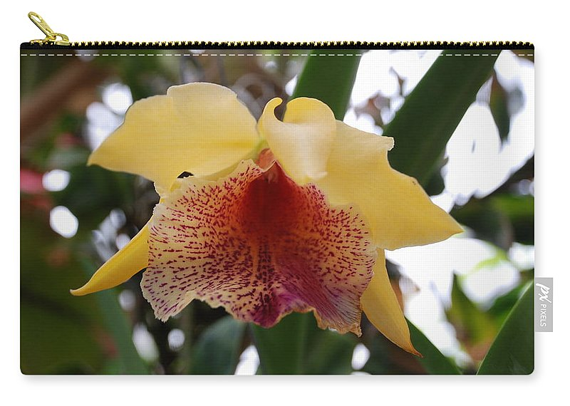 Macro Carry-all Pouch featuring the photograph Yellow Red Orchid by Rob Hans