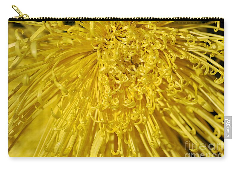 Clay Carry-all Pouch featuring the photograph Yellow Strings by Clayton Bruster