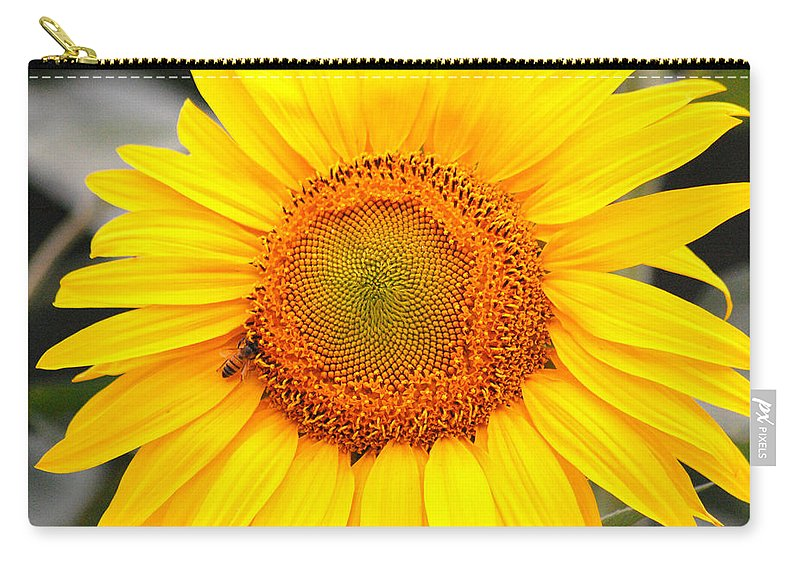 Sunflower Carry-all Pouch featuring the photograph Yellow Sunflower With Bee by Amy Fose