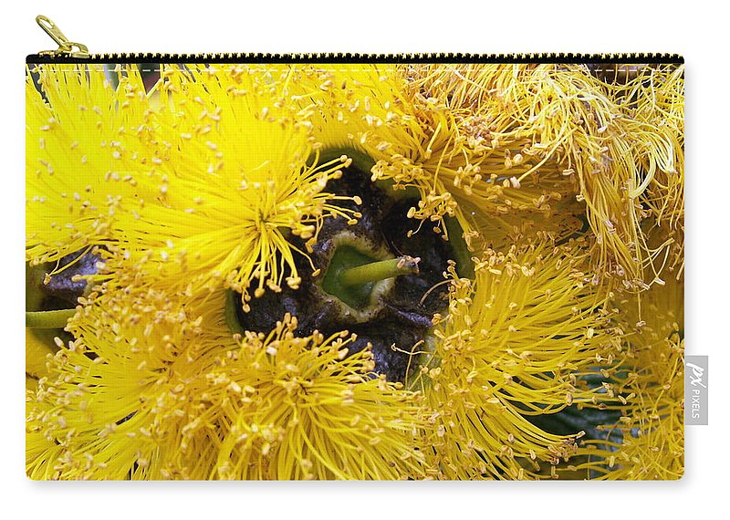 Flower Carry-all Pouch featuring the photograph Yellow Tree Flower by Amy Fose