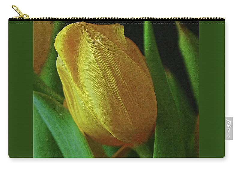 Yellow Tulip Carry-all Pouch featuring the photograph Yellow Tulip by Sharon Mayhak