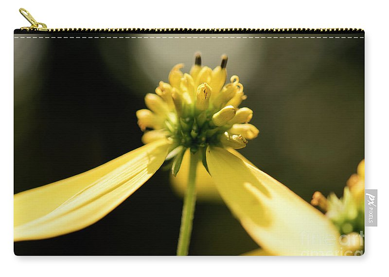 Yellow Flower Carry-all Pouch featuring the photograph Yellow Wildflower by Michelle Himes
