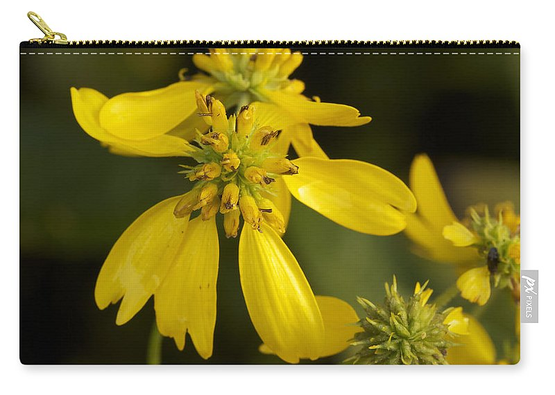 Wing Carry-all Pouch featuring the photograph Yellow Wingstem by Jack R Perry