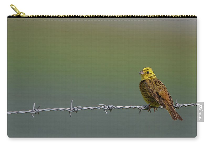 Yellowhammer Carry-all Pouch featuring the photograph Yellowhammer by Peter Walkden