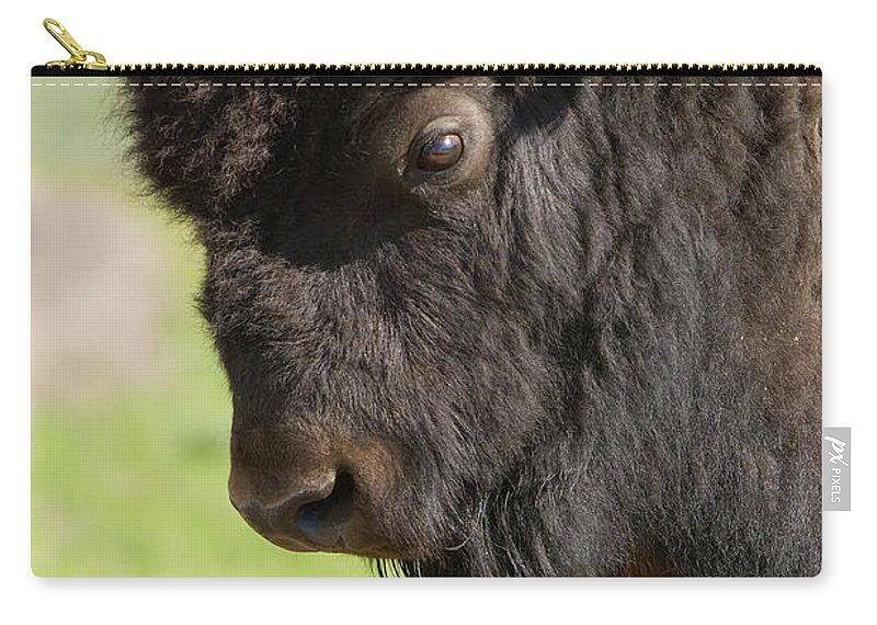 Bison Carry-all Pouch featuring the photograph Yellowstone Bison Portrait by Sandra Bronstein