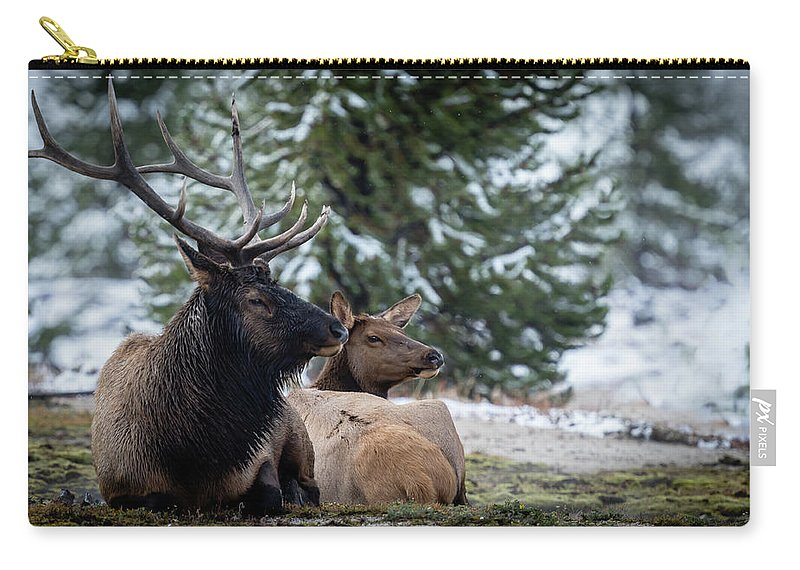 Landscape Carry-all Pouch featuring the photograph Yellowstone Wild by Gary Migues