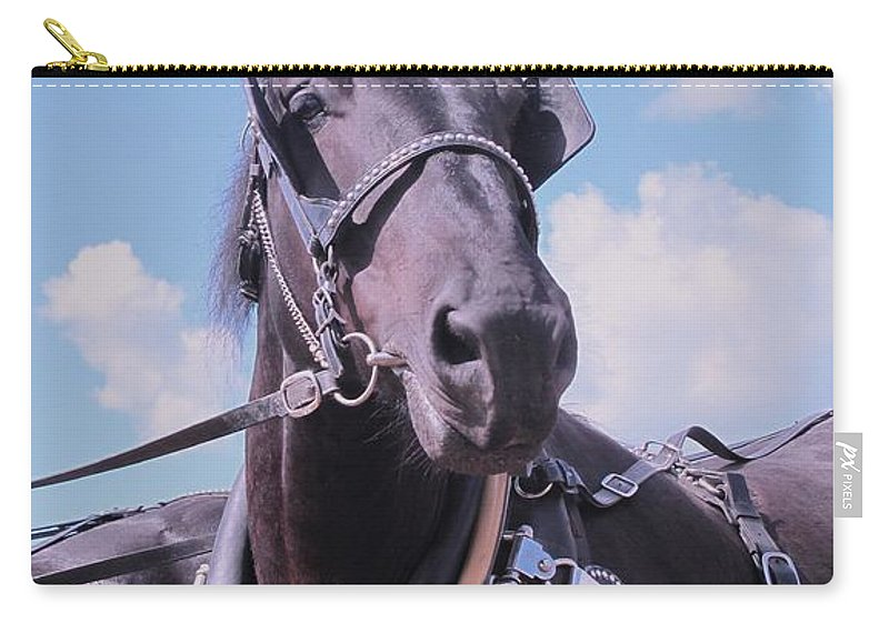 Percheron Carry-all Pouch featuring the photograph Yes I Am The Most Beautiful by Ian MacDonald
