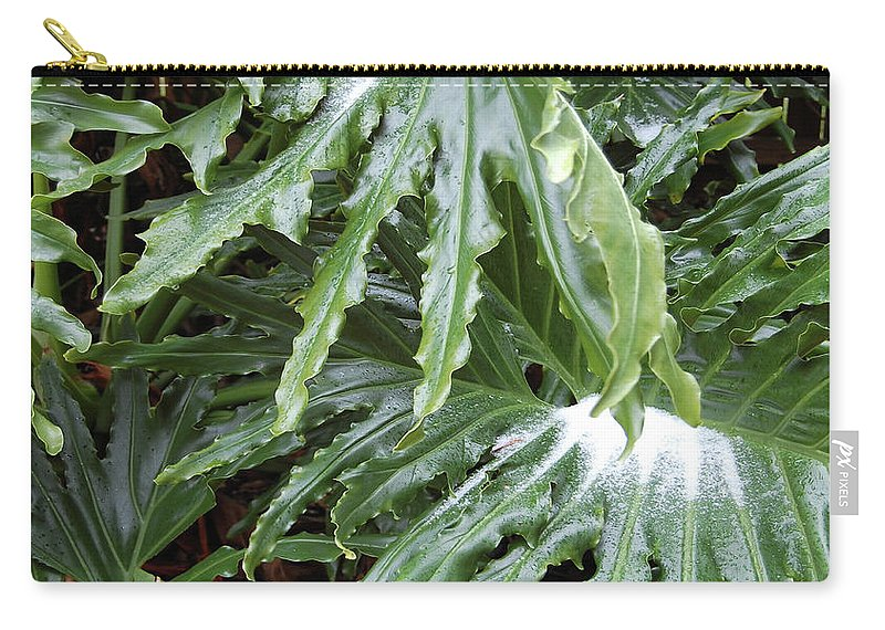 Philodendron Carry-all Pouch featuring the digital art Yes Snow In Florida by DigiArt Diaries by Vicky B Fuller