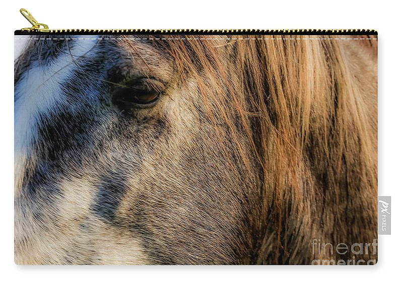 Missouri Ozarks Carry-all Pouch featuring the photograph Yesterday by Lynn Sprowl