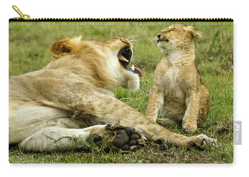 Africa Carry-all Pouch featuring the photograph Yikes by Michele Burgess