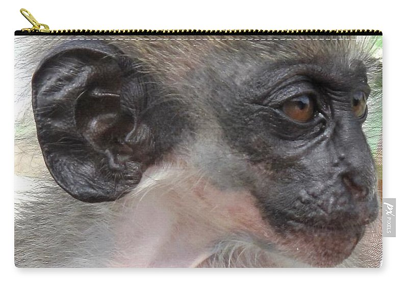 Verdant Carry-all Pouch featuring the photograph Yoda Before Star Wars by Ian MacDonald