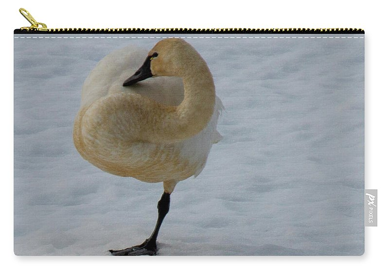 Swans Carry-all Pouch featuring the photograph Yoga Tree Pose by Dan Earle