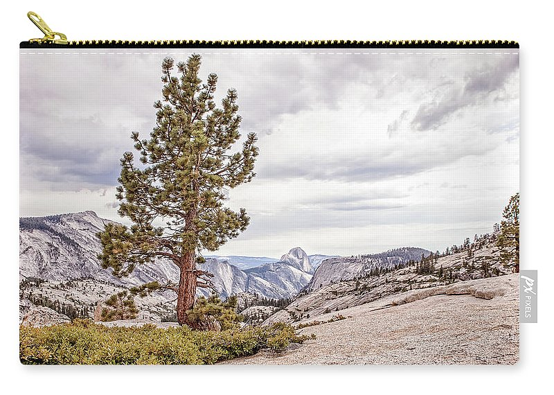 Landscape Carry-all Pouch featuring the photograph Yosemite Tree by Cate O'Donnell