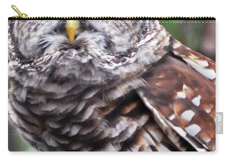 Owl Carry-all Pouch featuring the photograph You Can Call Me Owl 2 by Lydia Holly