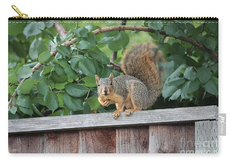 Animals Carry-all Pouch featuring the photograph You Looking At Me by Carol Groenen