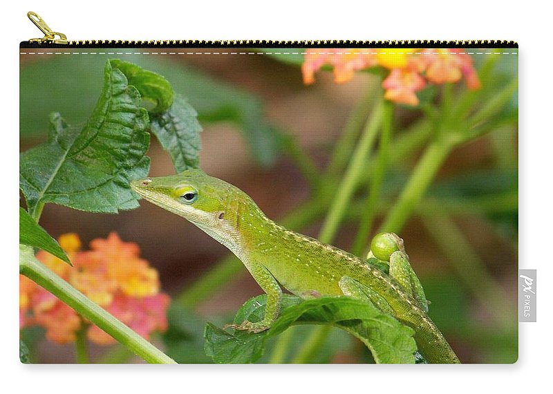 Lizard Carry-all Pouch featuring the photograph You Looking At Me? by Kathy Shoemaker