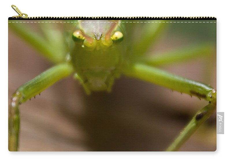 Katydid Carry-all Pouch featuring the photograph You Said What by Douglas Barnett