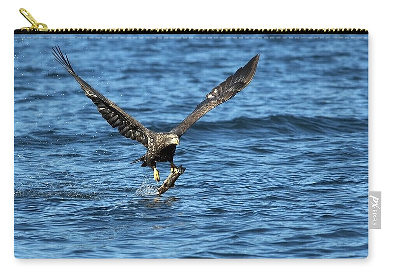 Bald Eagle Carry-all Pouch featuring the photograph Young Bald Eagle II by Randall Ingalls