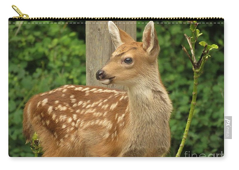 Fawn Carry-all Pouch featuring the photograph Young Fawn by Mel Manning