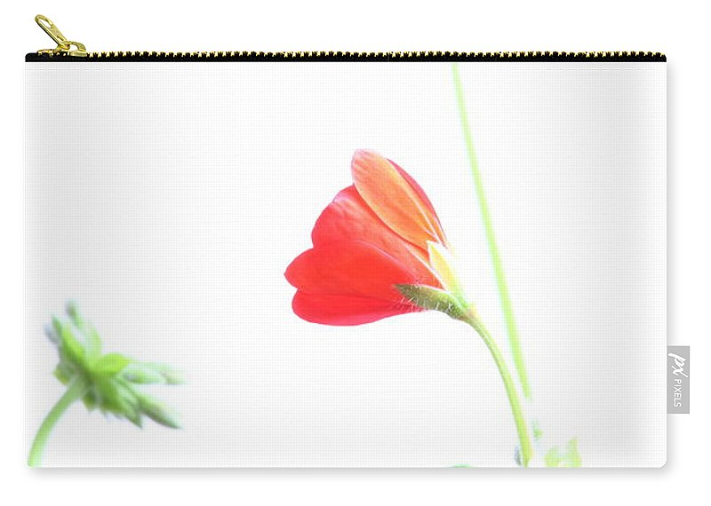 Geranium Carry-all Pouch featuring the photograph Young Geranium Fine Art Photography Print by James BO Insogna