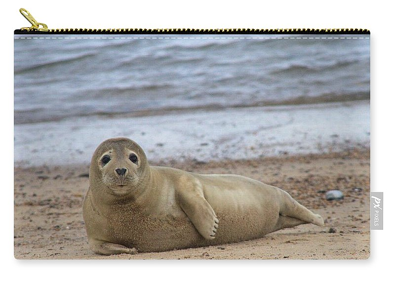 Seal Carry-all Pouch featuring the photograph Young Seal Pup On Beach - Horsey, Norfolk, Uk by Gordon Auld