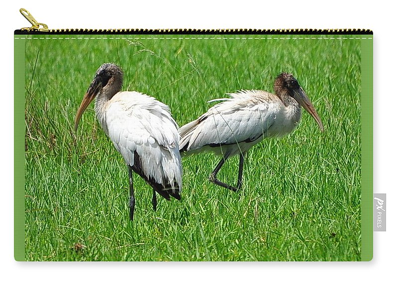 Wood Storks Carry-all Pouch featuring the photograph Young Wood Storks 2 by Amy Spear