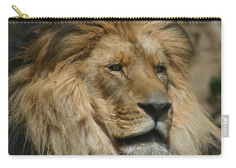 Lion Carry-all Pouch featuring the photograph Your Majesty by Anthony Jones