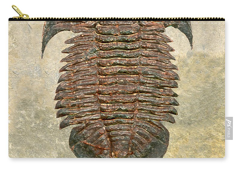 Trilobite Fossil Ancient Colorful Exotic Paleontology Marine Prehistoric Unique Cool Awesome Yuepingia Carry-all Pouch featuring the photograph Yuepingia Fossil Trilobite by Melissa A Benson
