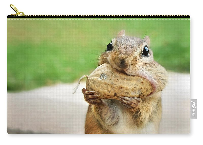 Chipmunk Carry-all Pouch featuring the photograph Yummy by Lori Deiter