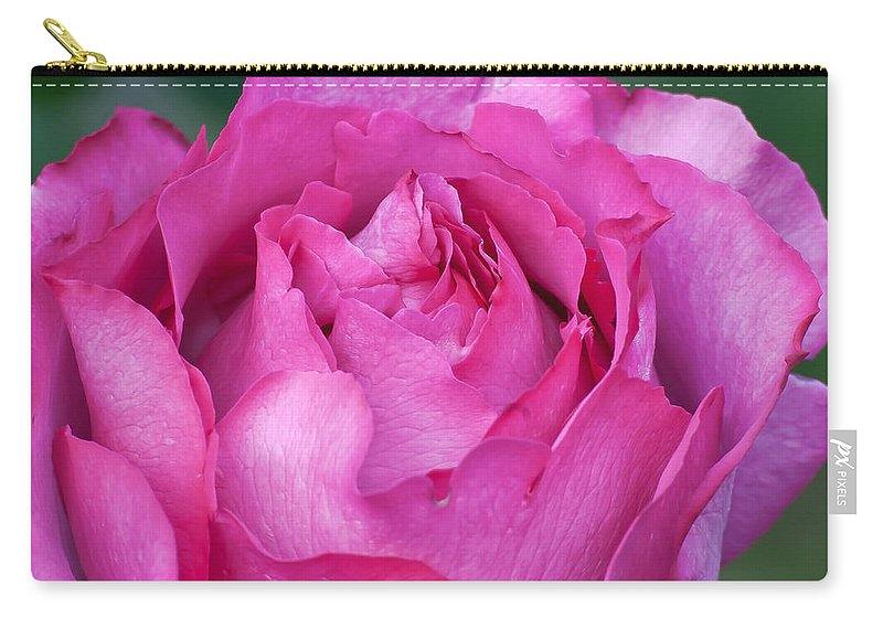 Appreciation Carry-all Pouch featuring the photograph Yves Piaget Rose by Emerald Studio Photography