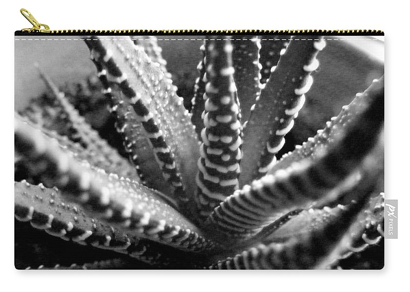 Black And White Photography Carry-all Pouch featuring the photograph Zebra Cactus Bw by Barbara Griffin