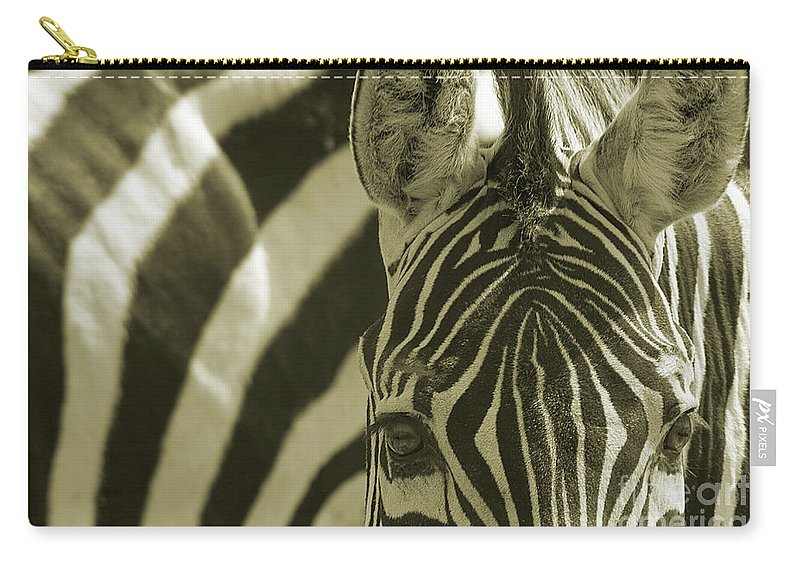 Psi Carry-all Pouch featuring the photograph Zebra Close Up A by Ofer Zilberstein