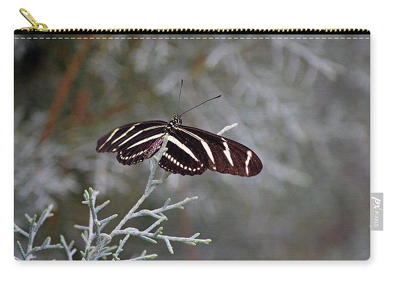 Zebra Longwing Butterfly Carry-all Pouch featuring the photograph Zebra Longwing Butterfly by Ken Figurski