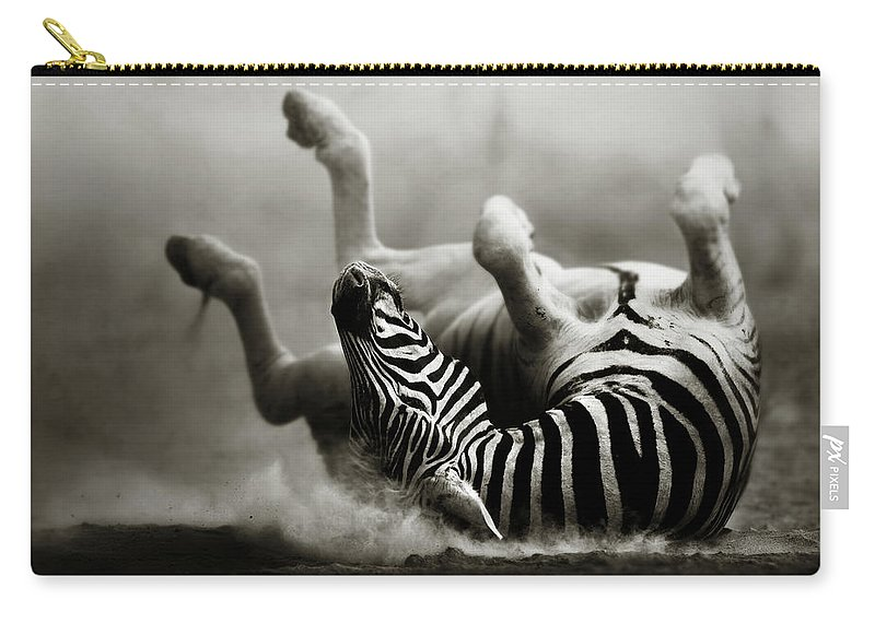 Zebra Carry-all Pouch featuring the photograph Zebra Rolling by Johan Swanepoel