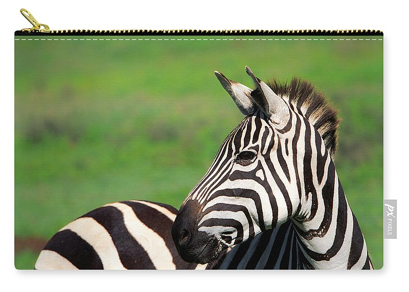 Africa Carry-all Pouch featuring the photograph Zebra by Sebastian Musial