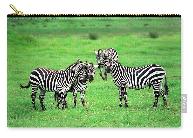 Africa Carry-all Pouch featuring the photograph Zebras by Sebastian Musial