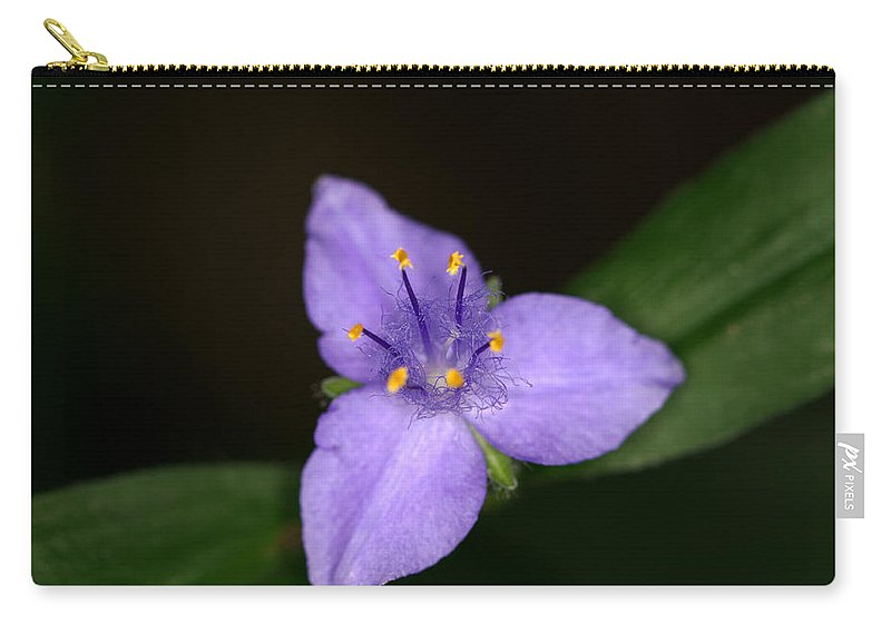 Zigzag Carry-all Pouch featuring the photograph Zigzag Spiderwort by Jack R Perry