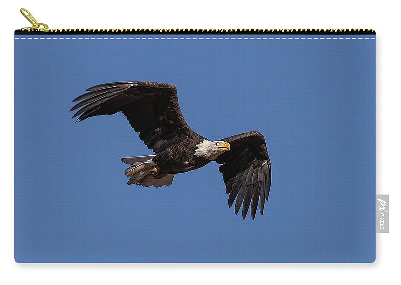 Bald Eagle Carry-all Pouch featuring the photograph American Bald Eagle In Flight by Tony Hake