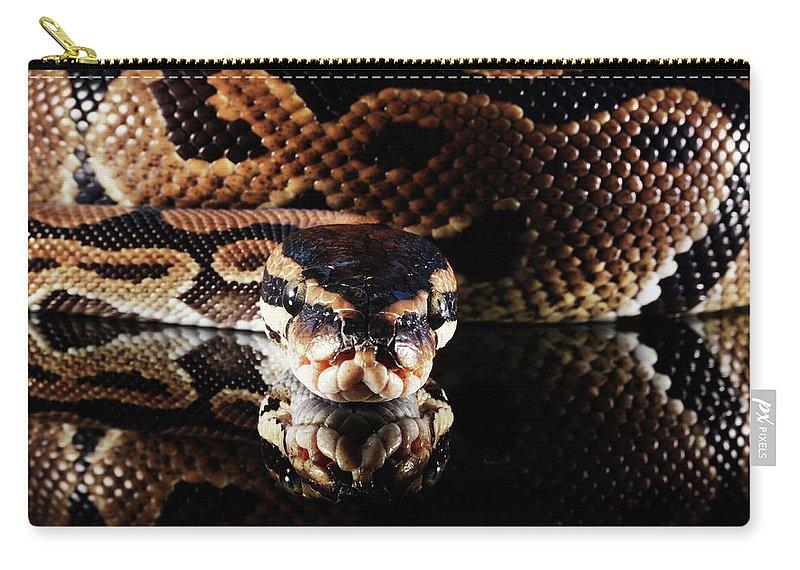 Copenhagen Carry-all Pouch featuring the photograph Burmese Python by Henrik Sorensen