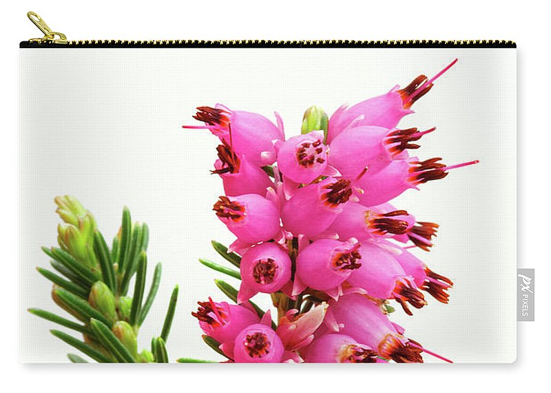 Furzey Carry-all Pouch featuring the photograph pink flowers Furzey heather by Robert C Paulson Jr