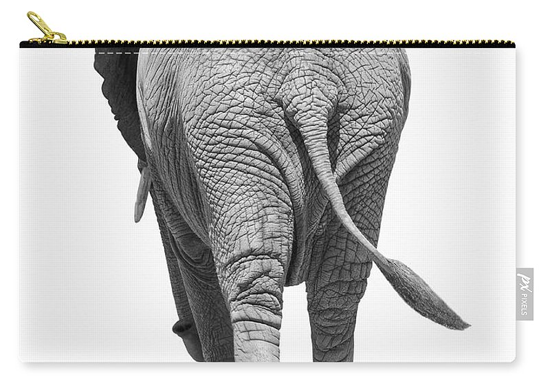 Shadow Carry-all Pouch featuring the photograph Elephants Behind by Burazin