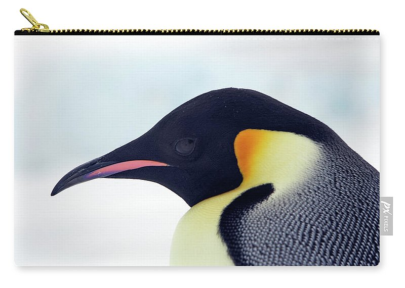 Emperor Penguin Carry-all Pouch featuring the photograph Emperor Penguin by Sylvain Cordier